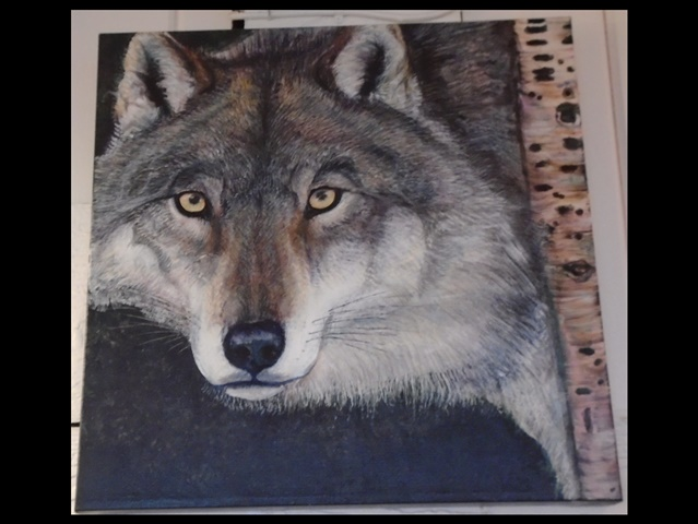 "Wolf, acrylic painting, 18"" x 20"""
